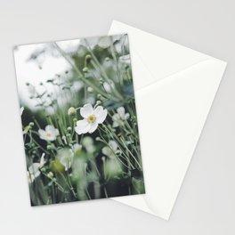 Botanicals Stationery Cards