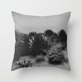 Agave II Throw Pillow