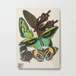 Butterfly and Moth Print by E.A. Seguy, 1920s #19 Metal Print
