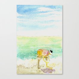 Shelling Canvas Print