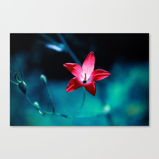 The Only One Canvas Print