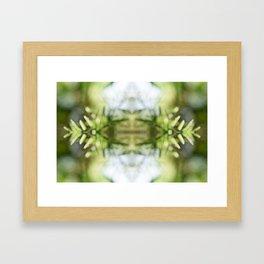 Nature Kaleidoscpe #5 Framed Art Print