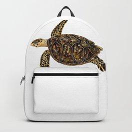 Hawksbill sea turtle (Eretmochelys imbricata) Backpack