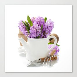 Beautiful Hyacinths in vase and garden tools Canvas Print