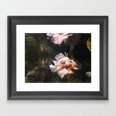 fish love Framed Art Print