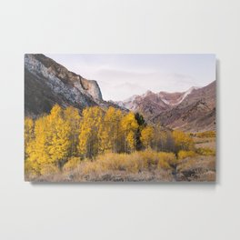 McGee Creek Fall Colors Metal Print