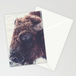 Into the eye Stationery Cards