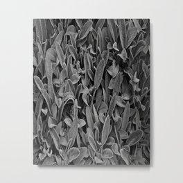 Alien Plant Life Metal Print