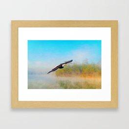 Bald Eagle Out of the Mist Framed Art Print