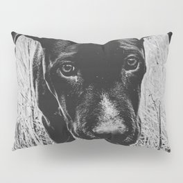 Doggy in the Field // B&W Hiking by Rustic Abandoned Log Cabin Summit Colorado Pillow Sham