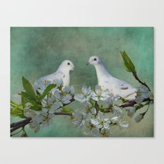 A Spring Thing Canvas Print
