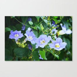 Time For Spring - Floral Art By Sharon Cummings Canvas Print