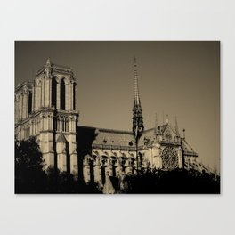 lighthearted darkness. Canvas Print