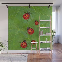 RED LADY BUGS ON GREEN LEAVES DESIGN ART Wall Mural