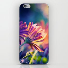 Colorful Days iPhone Skin
