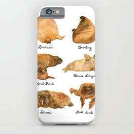 the furnished walrus iPhone Case
