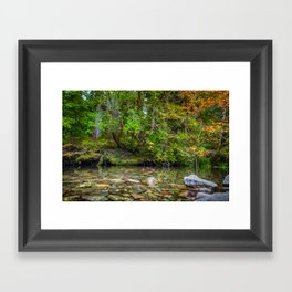 Morning in the Hoh Rain Forest 2 Framed Art Print