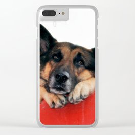 Sad Dog In Red Balcony. Closer Photo Clear iPhone Case