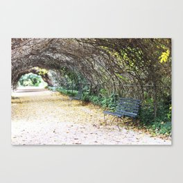 A Scenic Walkway Canvas Print