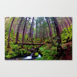 Olympic Peninsula Greens Canvas Print