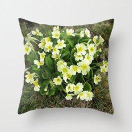Primrose Time Throw Pillow
