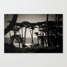 Lands End. Canvas Print