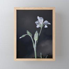 PURITY WHITE FLOWER Framed Mini Art Print