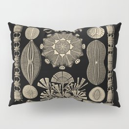 """Diatomea"" from ""Art Forms of Nature"" by Ernst Haeckel Pillow Sham"