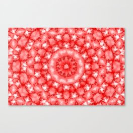 Kaleidoscope Fuzzy Red and White Circular Pattern Canvas Print