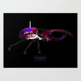 Dynastes Wirelessus Beetle Art Print
