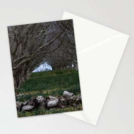 Nature - Crow's Landing Trees 4 Stationery Cards
