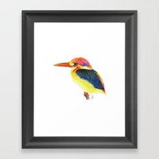 Kingfisher II Framed Art Print