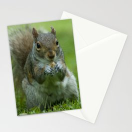 Nibble Away Stationery Cards