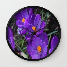Purple Crocus Wall Clock