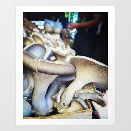 Capitol Hill Market Shrooms Art Print