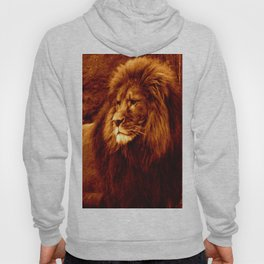 Golden Lion Hoody