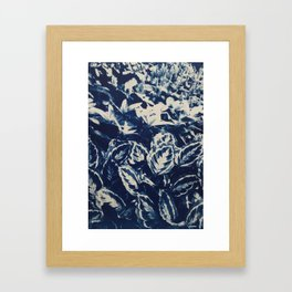 Prayer Plant II Framed Art Print