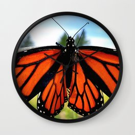 Butterfly King Wall Clock