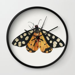 Butterfly from Insects and Fruits (1660-1665) by Jan van Kessel Wall Clock