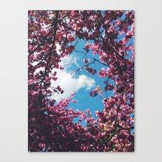 SPRING 5 Canvas Print