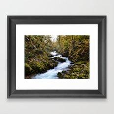 River in Bled, Slovenia. Framed Art Print