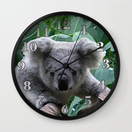 Koala and Eucalyptus Wall Clock