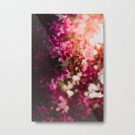 Beauty of Spring II Metal Print