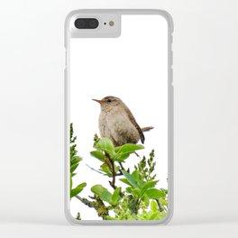 Wren Songbird Bird on a Branch (Troglodytes) Clear iPhone Case