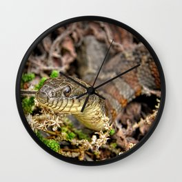A Snake In The Moss Wall Clock