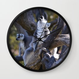Lemur Howl Wall Clock