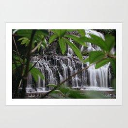 Purakaunui Falls Art Print