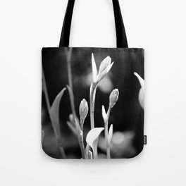 Hosta Buds and Stems Tote Bag