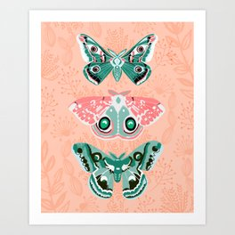 Lepidoptery No. 3 by Andrea Lauren  Art Print