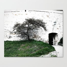 Rothenburg 30 Canvas Print